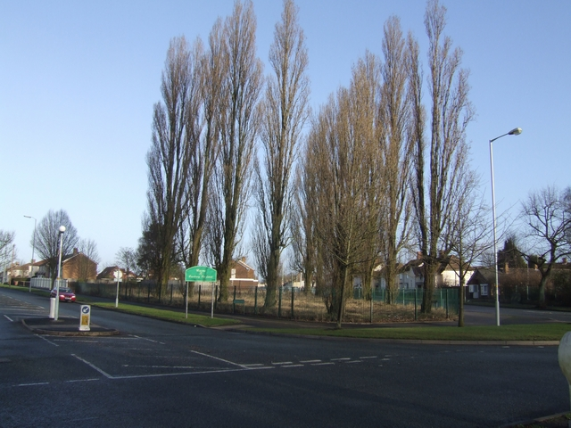 The changing face of Showell Circus