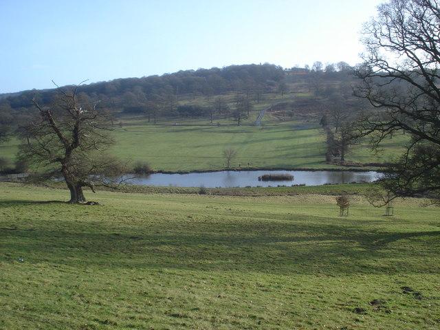 Large pond at Eastnor Park