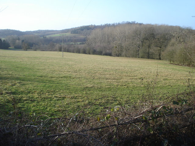 Field near Park Lodge
