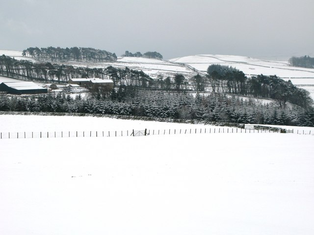 Pastures and woodland near Park Gates Farm