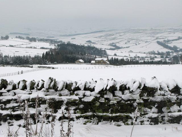Pastures above Low Parkgates