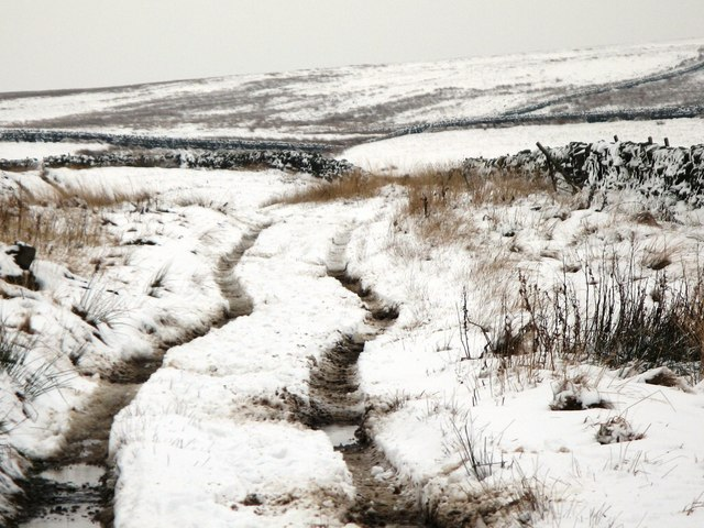 The track to Haggerstone Moss (4)