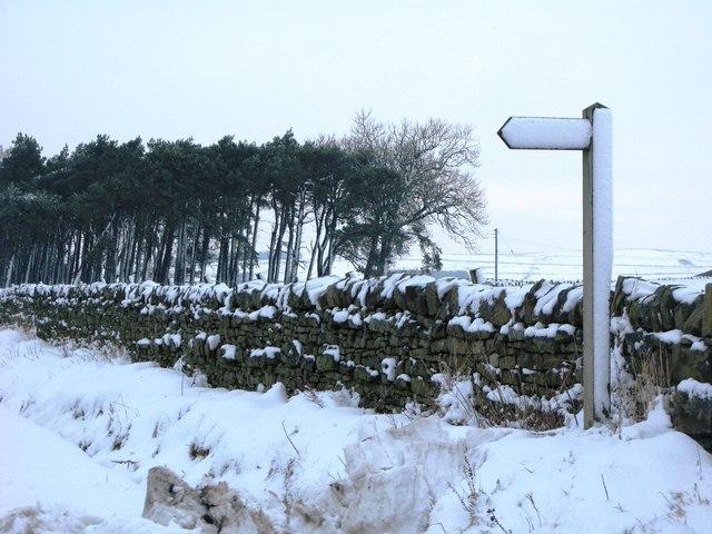 Footpath to Snowland
