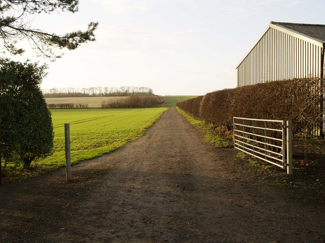 A Yorkshire Wolds farm track