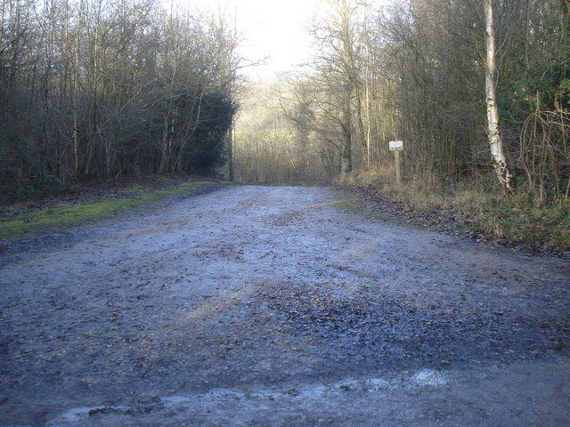 Track off The Ridgeway