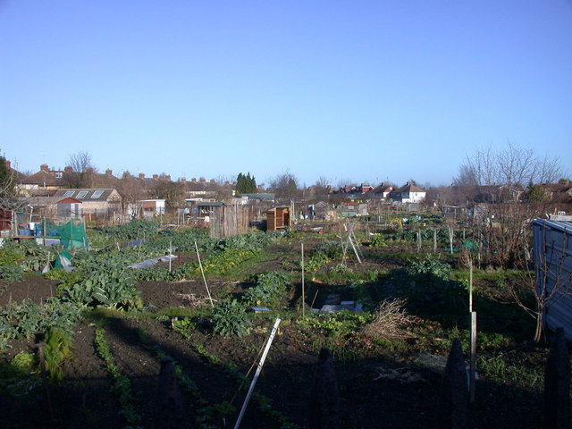 Fairfax Road allotments