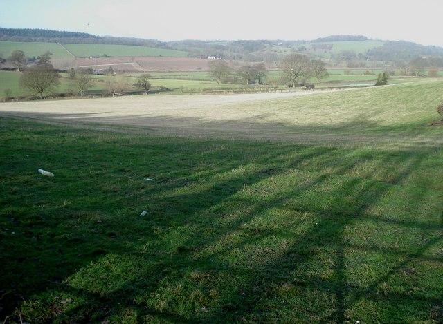 Pasture land near Massington Farm