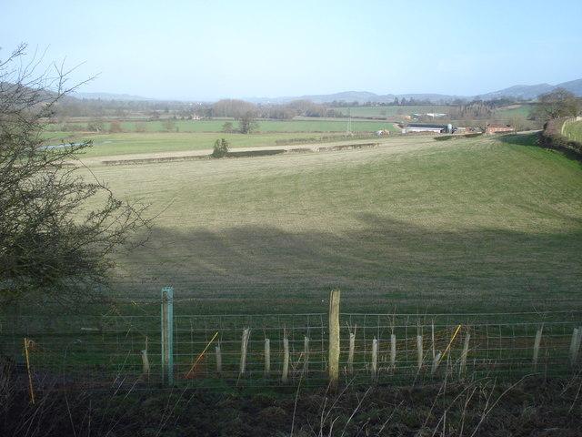 Massington Farm