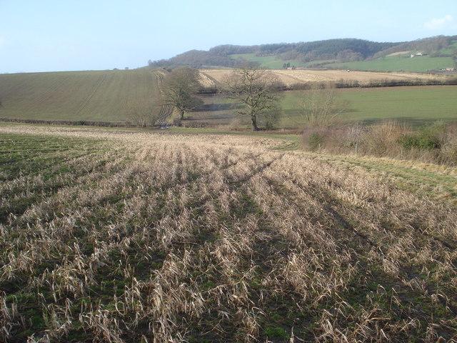 Footpath to Ledbury