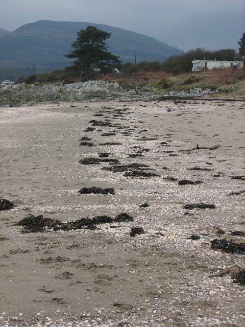Beach, White Bay