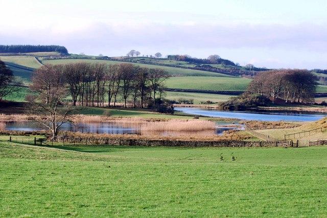 Field next to Loch Ken, Crossmichael