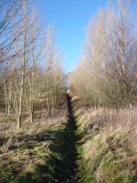Footpath at Lorenden