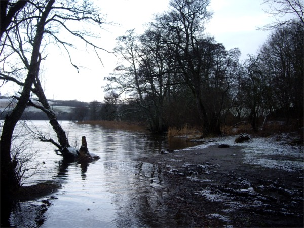 Shore of Loch of Clunie on a wintry morning