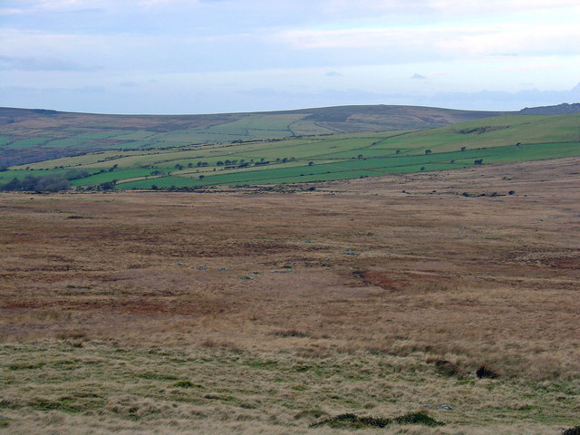 Moorland at the head of the Afon Nyfer