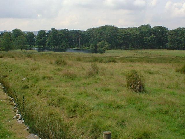 Approaching Longshaw Lake