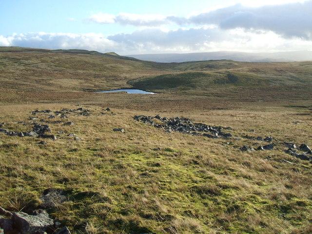 Across lower Warcop Fell towards Dogber Tarn