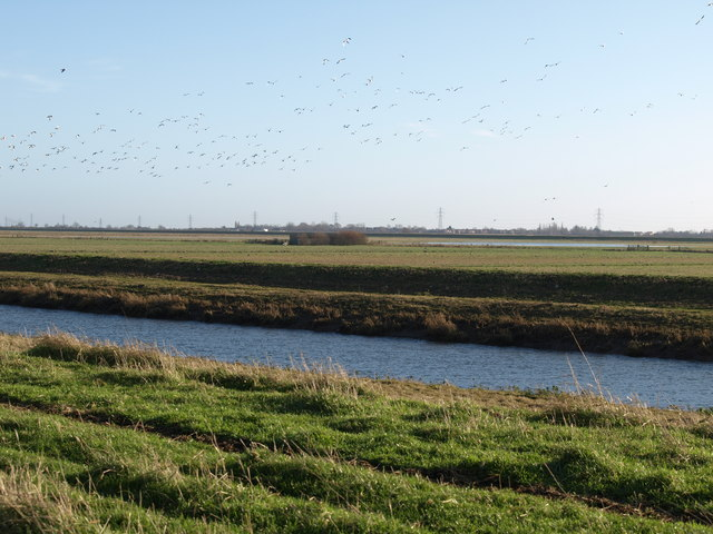 Whittlesey Wash