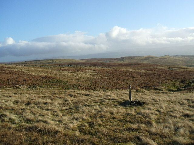 Looking across to Great Turplacks and Musgrave Fell