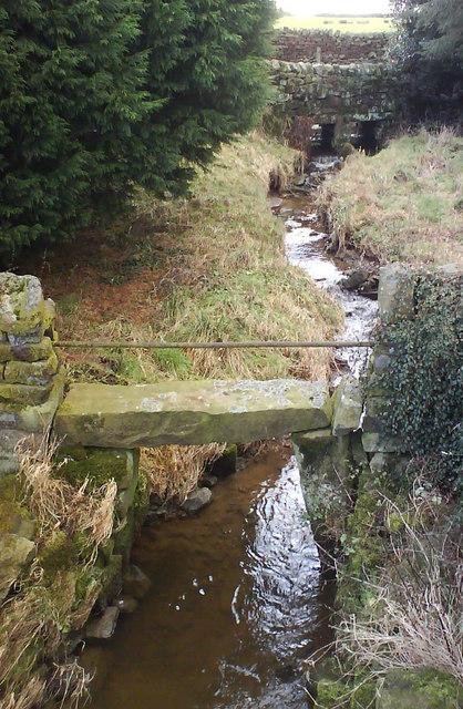 Stream at Lanes Foot