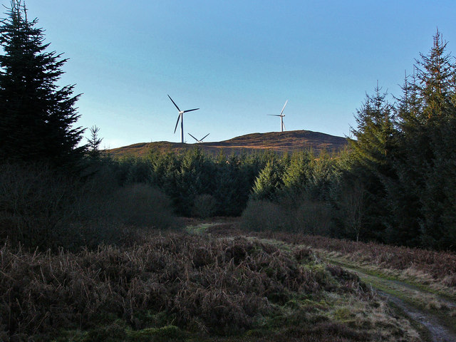 Forestry road and wind turbines