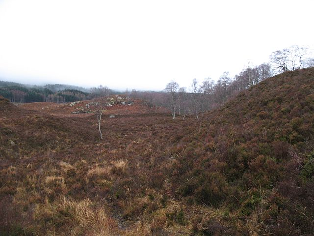Scattered birches near Creag a' Chlamhain