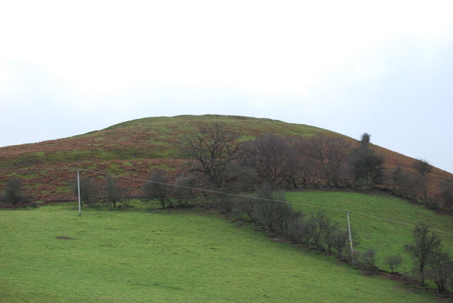 Llwyn Bryn-dinas from the north