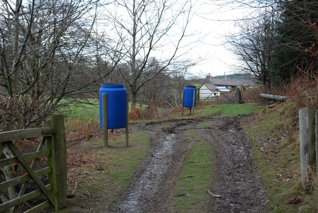 Pheasant feeders at the edge of woodland
