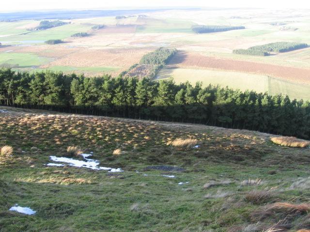 Below Borland Hill