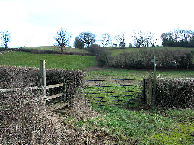 Herefordshire Trail, north of Crow Hill