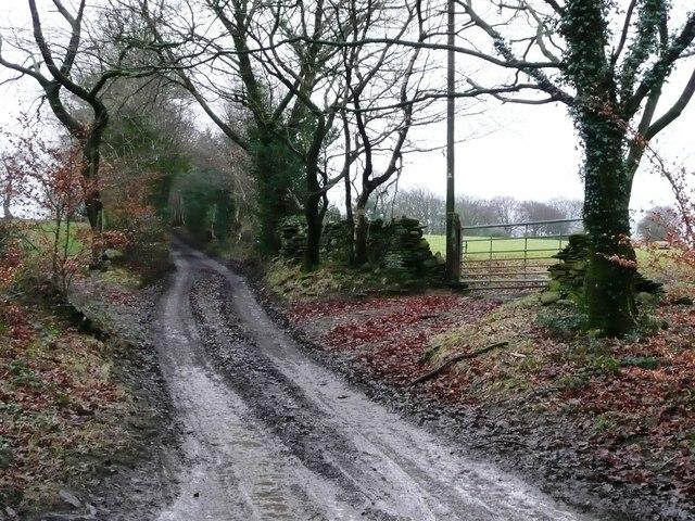 Track to Graig Farm