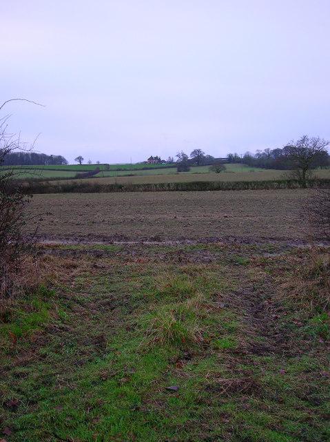 Curds Farm