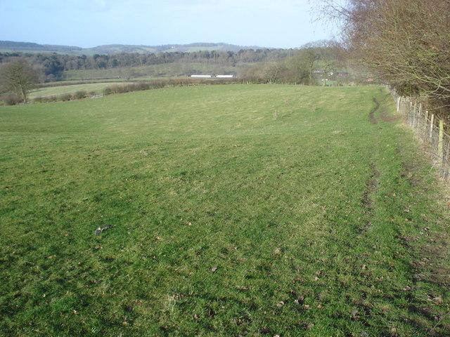 Public footpath near News Wood