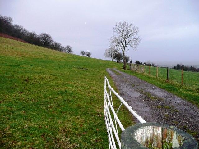 Track to Dyffryn-ffynnonau