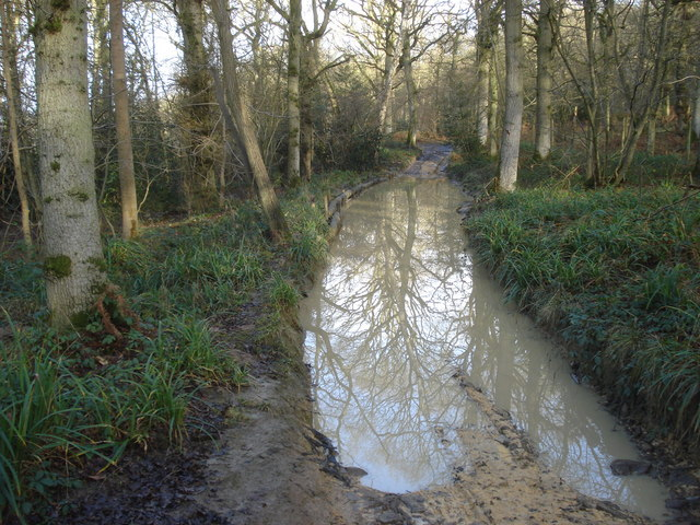 Water splash in Birchen Wood