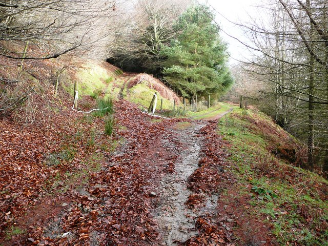 Path junction near Rhyswg-fach