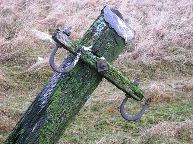 An old telegraph pole