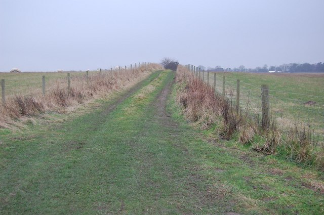 Track leading to Tinker's House