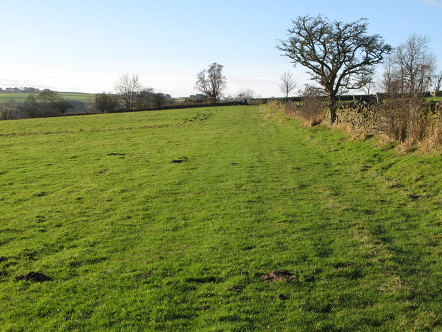 Fields near Pasture House
