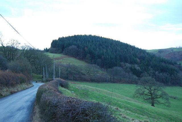 Looking South West to Graig-wen Wood