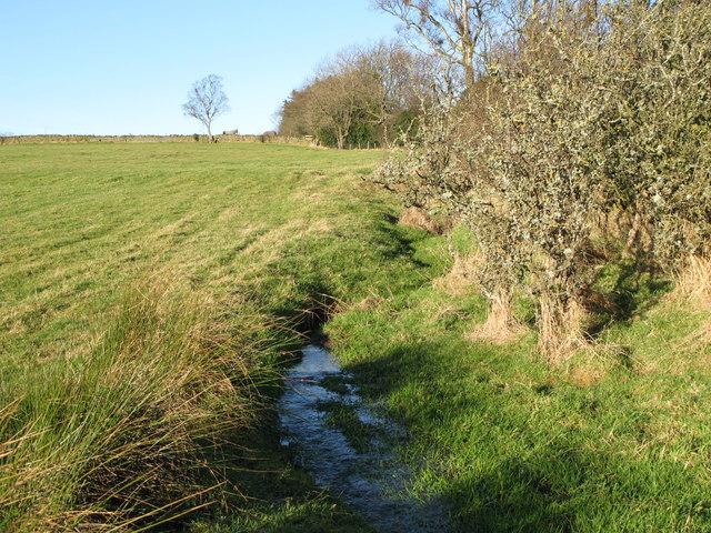 Small stream near Pasture House