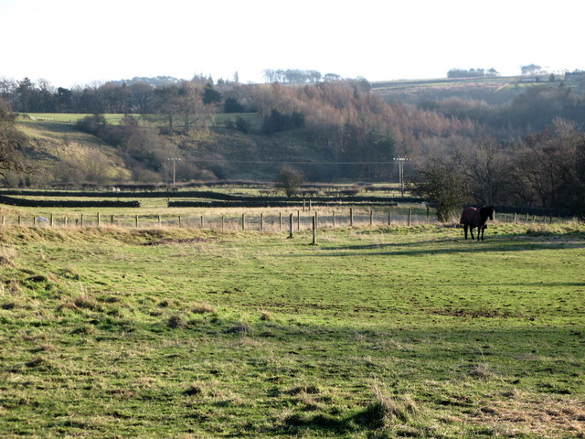 Pastures near Allenmills Bridge