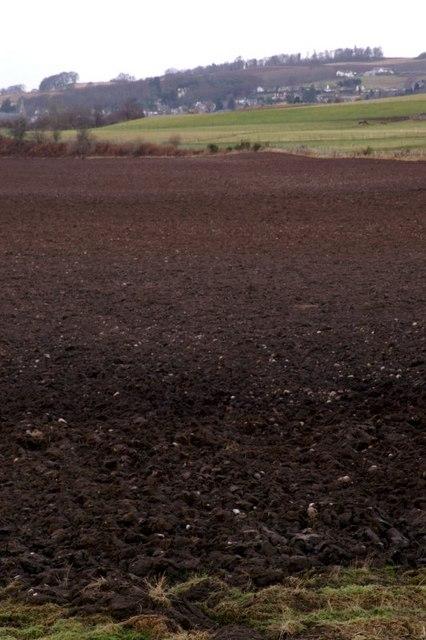 Farmland east of Rattray