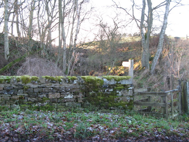 Footpath to the Faerie Glen
