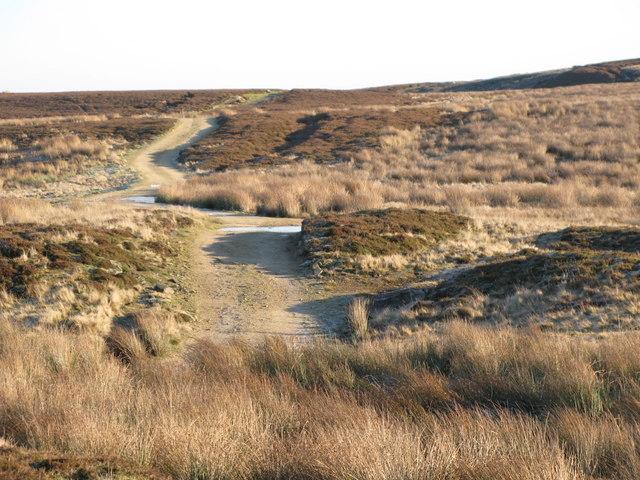 Track on Burntridge Moor (2)