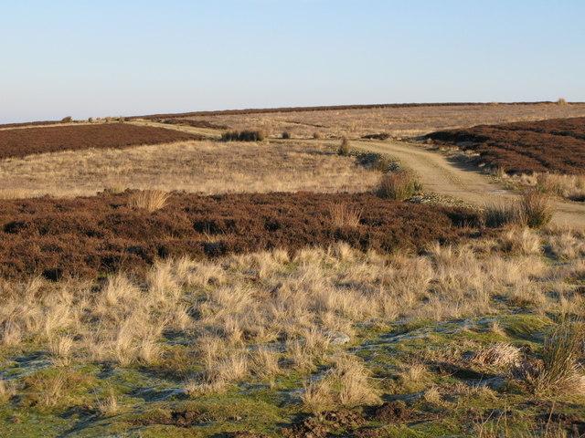 Track below Crawberry Hill