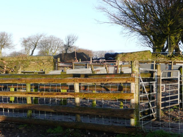 Sheep pens adjacent to the cattle grid