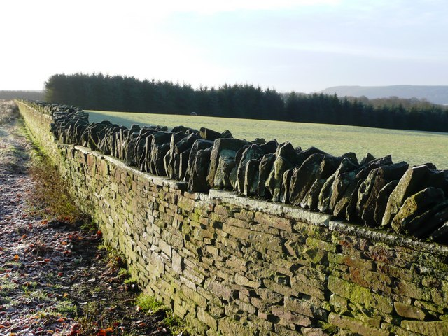 Moorland wall