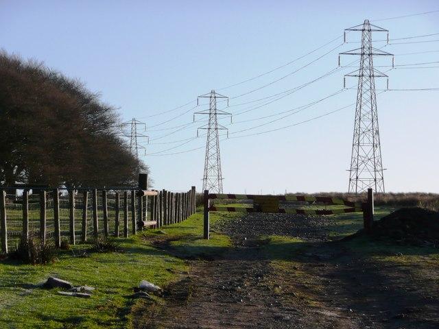 Pylons over Mynydd Llywd