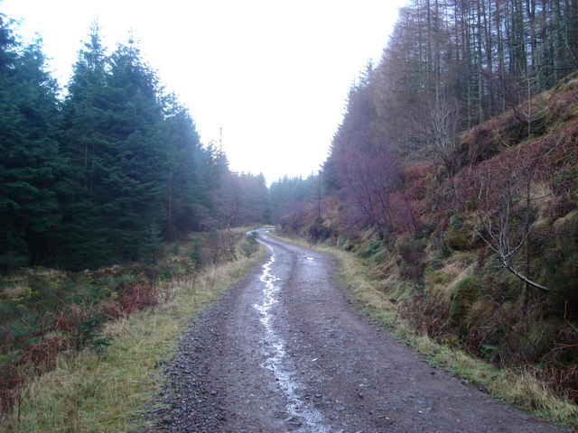 Forestry track northeast of Inverawe