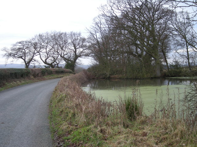 Pond beside the lane to Wheathall.